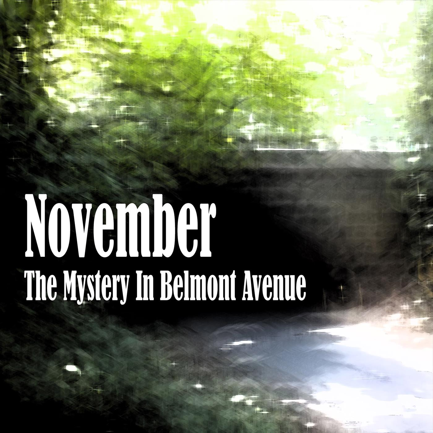 The Mystery in Belmont Avenue