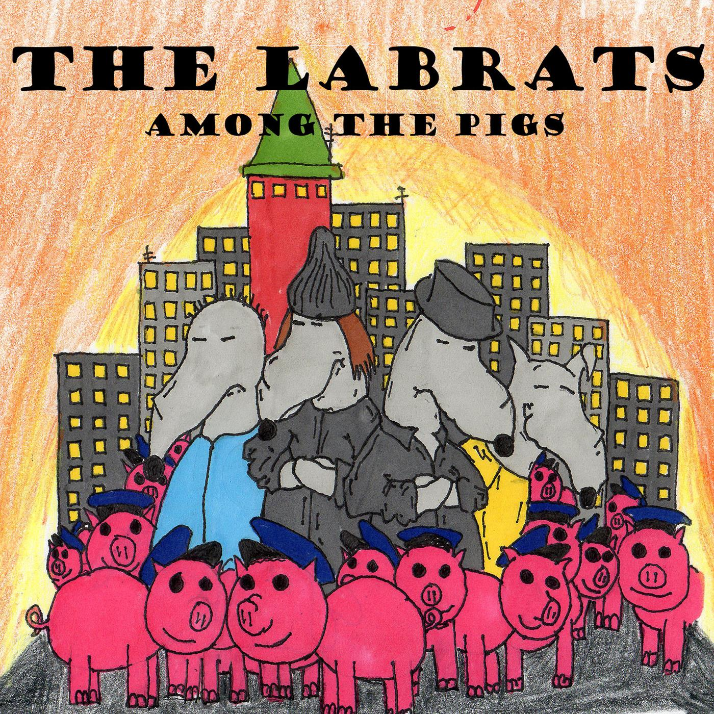 Among the Pigs