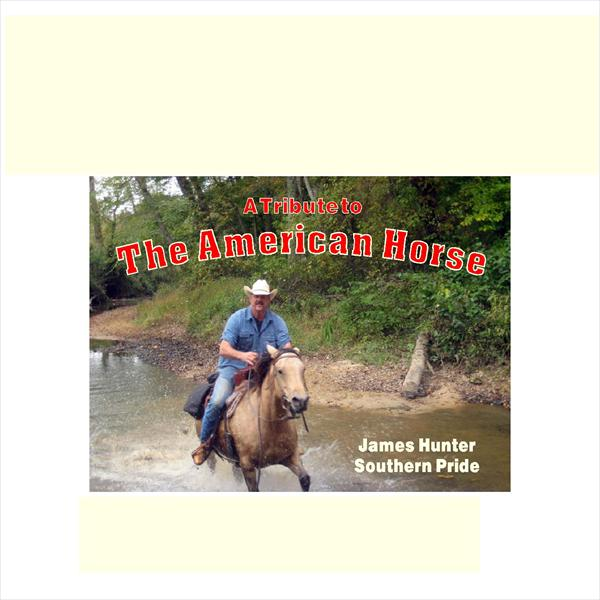 A Tribute to The American Horse