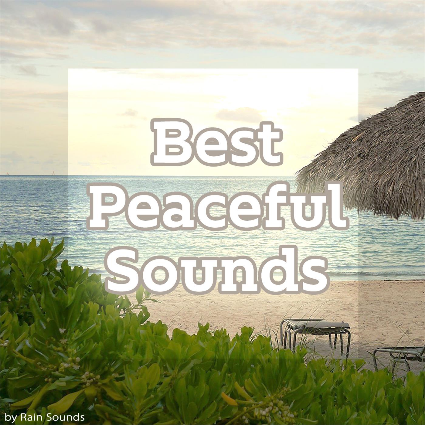 Best Peaceful Sounds | Record Union