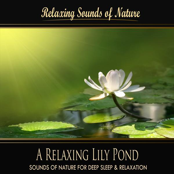 A Relaxing Lily Pond (Nature Sounds)