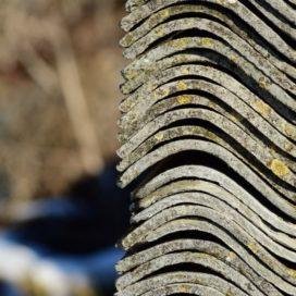 Asbest, de  'onverwoestbare'