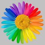 Ontdek uw veranderstijl met de Kleurenapp