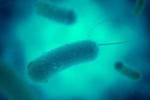 Legionella eist steeds meer mensenlevens