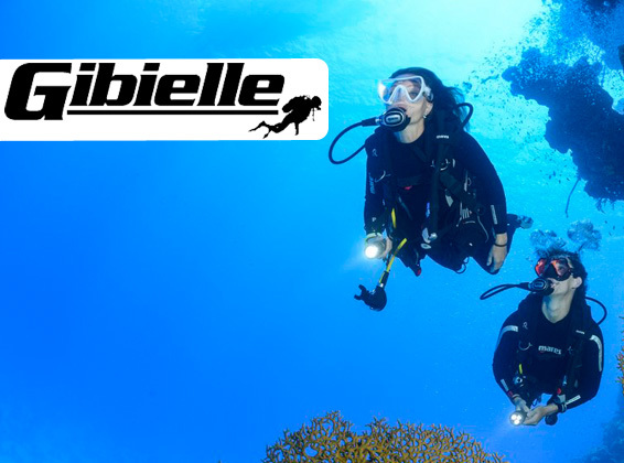 Category main gibielle image