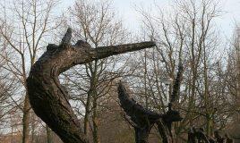 monument afschaffing slavernij