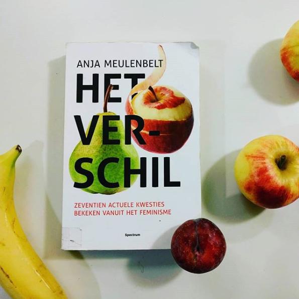 Anja Meulenbelt Het verschil : zeventien actuele kwesties bekeken vanuit het feminisme Collectie: Atria