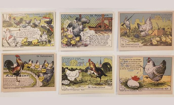 6 kiesrechtkaarten met kippen