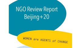 ngo review report beijing +20