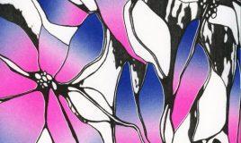 anatomische animatie marilyn sonneveld