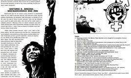 Institucionální feminismus vs. anarchofeminismus