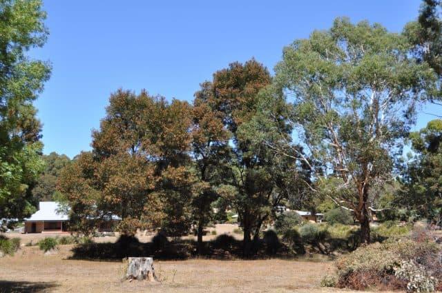 siti di incontri rurali Australia