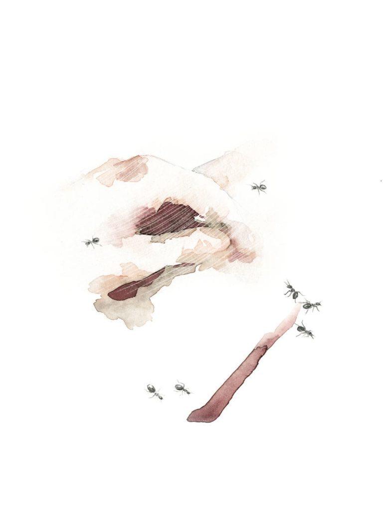 Acuarela de una mano rodeada de hormigas dibujadas a lápiz