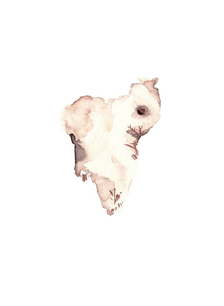Acuarela del pecho de una mujer con detalles bordados
