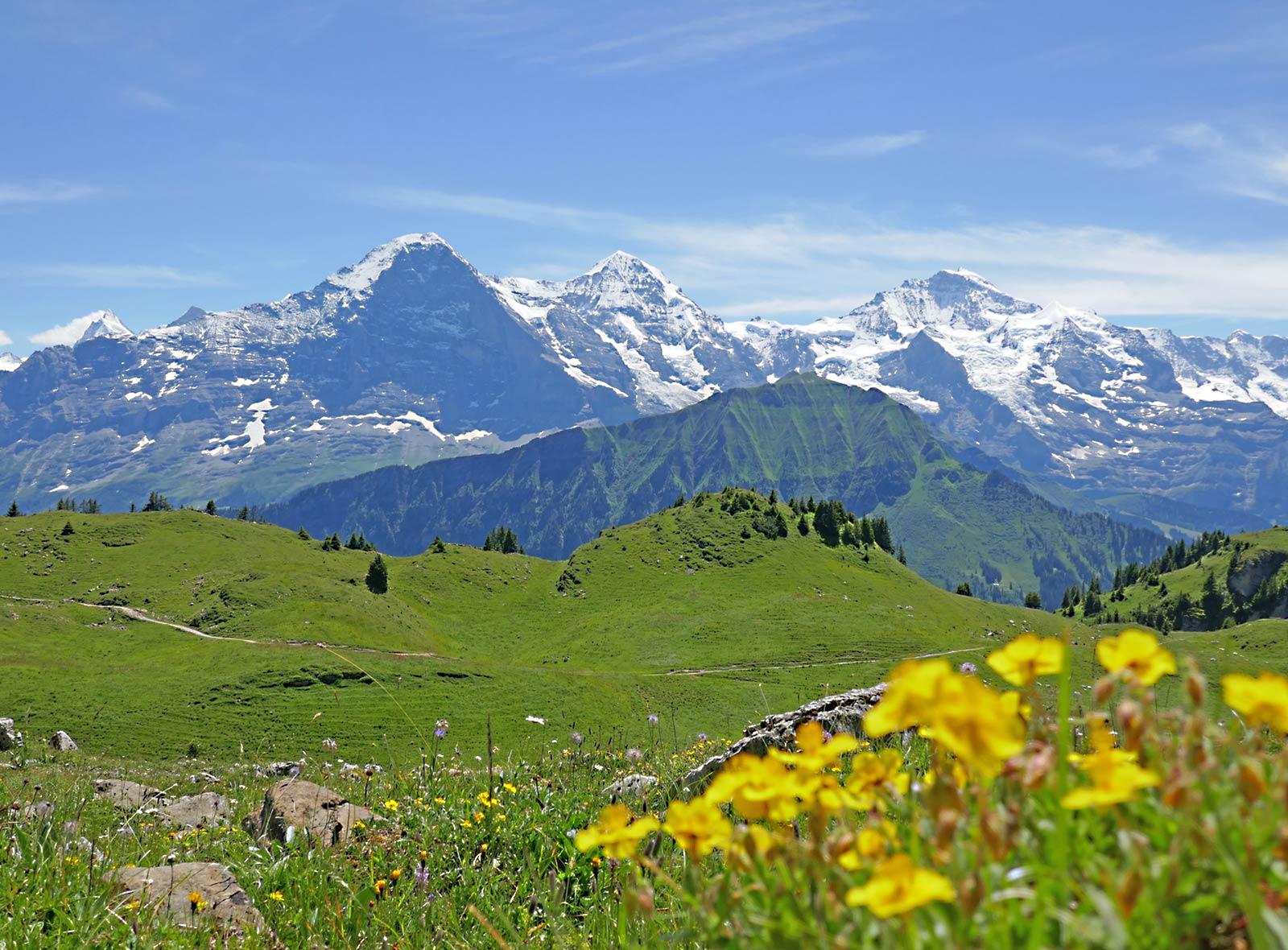 4000er in der Schweiz Finsteraarhorn, Fiescherhorn, Eiger, Mönch, Jungfrau