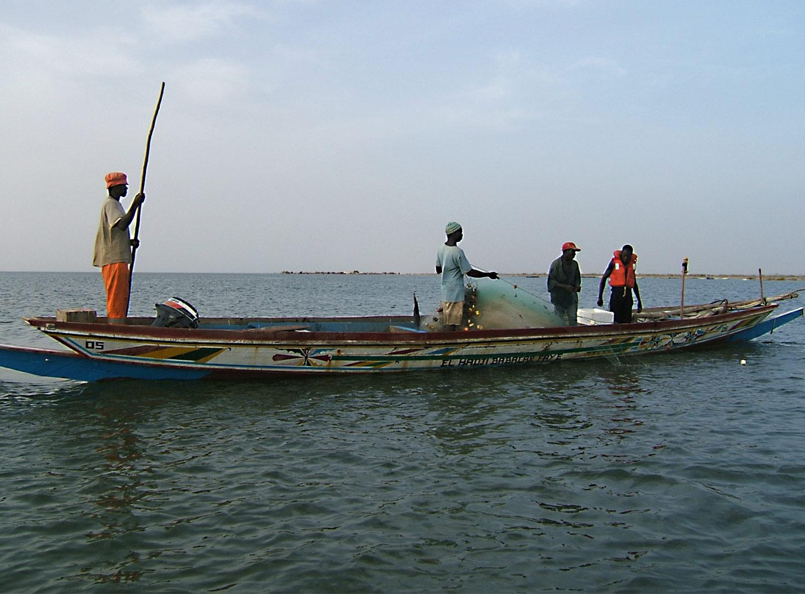 Kleinfischer in Senegal – nachhaltiger Fisch