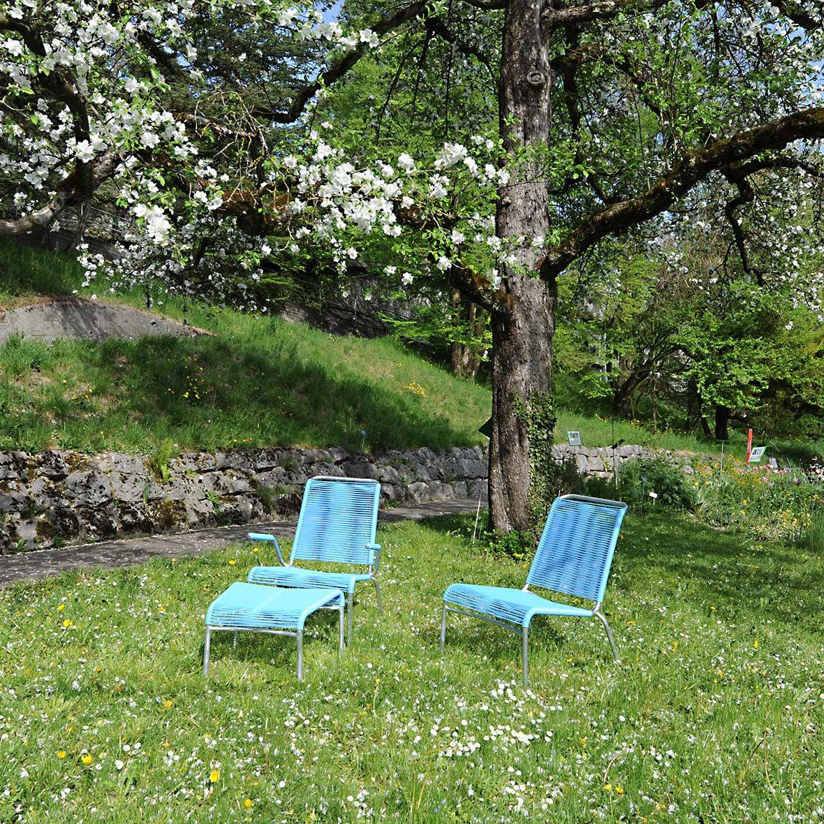 Altorfer Lounge Set Farbe Blau von Embru