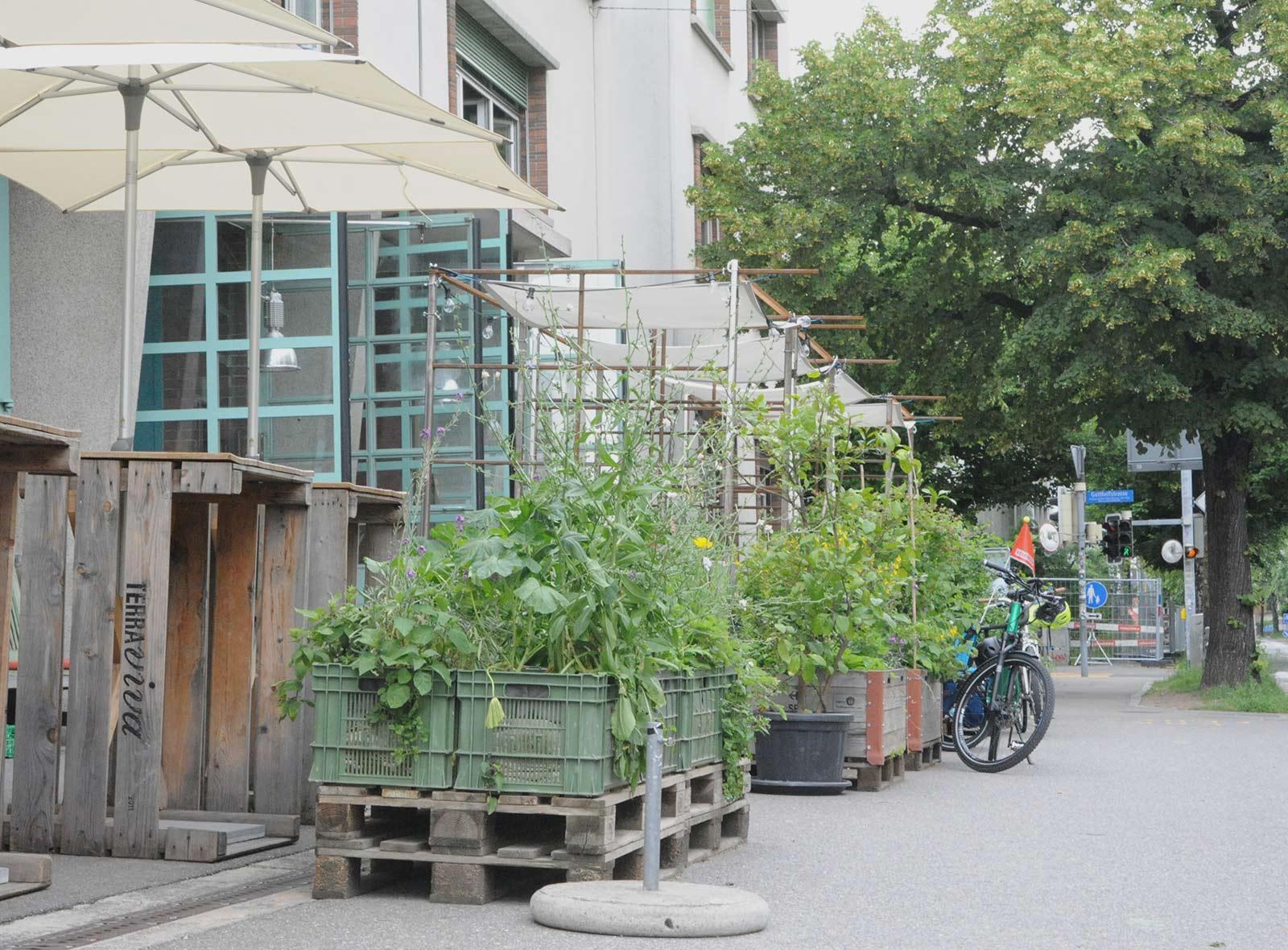 Urban Gardening Stadt Bern, Viktoriaplatz
