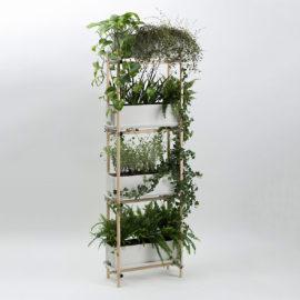 stelz vertikal gruen bepflanzt eternit1