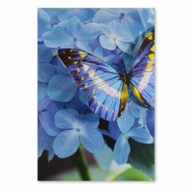 Blankokarte Schmetterling