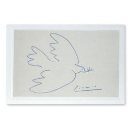 Blankokarte Picasso Taube