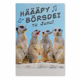 Geburtstagskarte Hääpy Börsdei