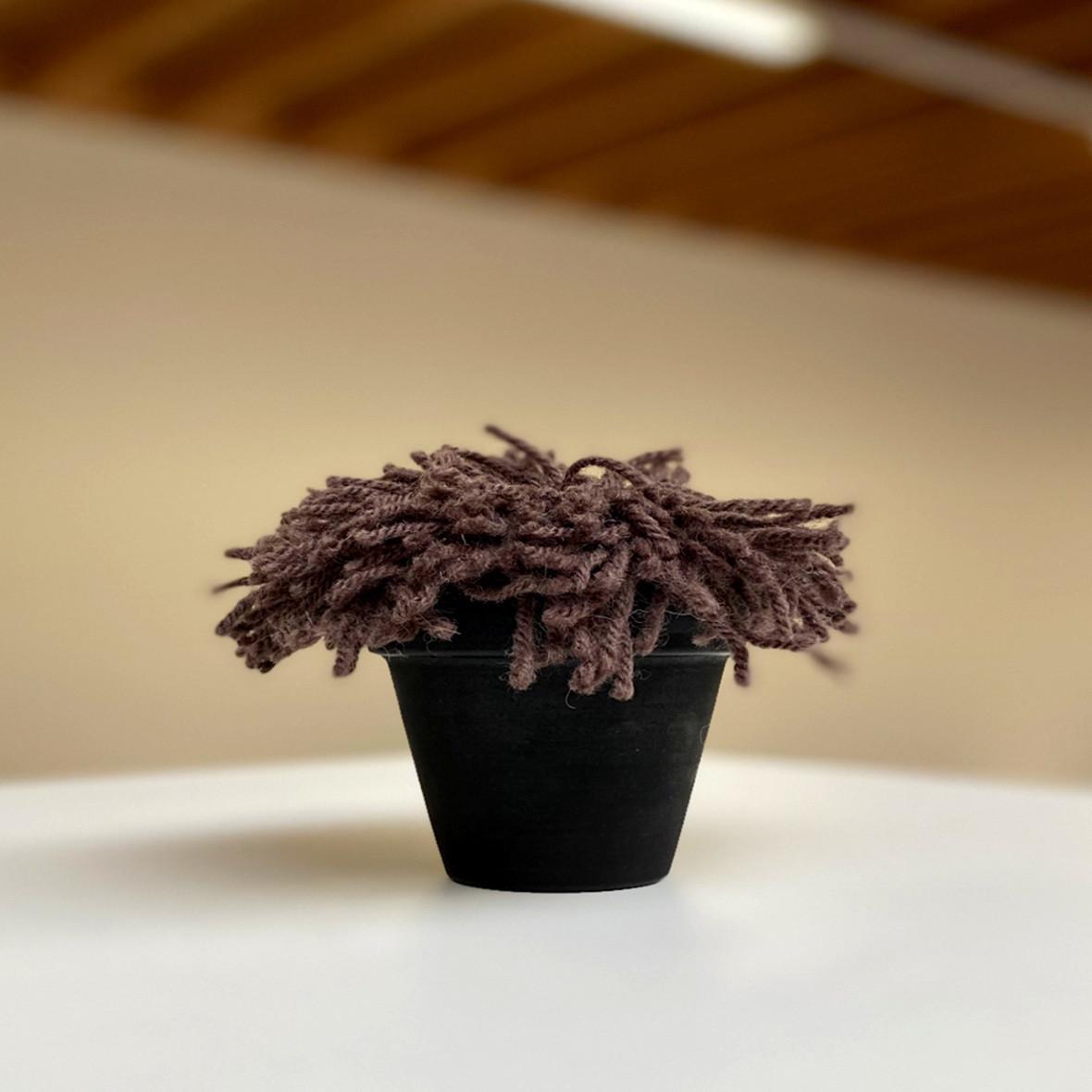 teppichblume braun topf schwarz kramis