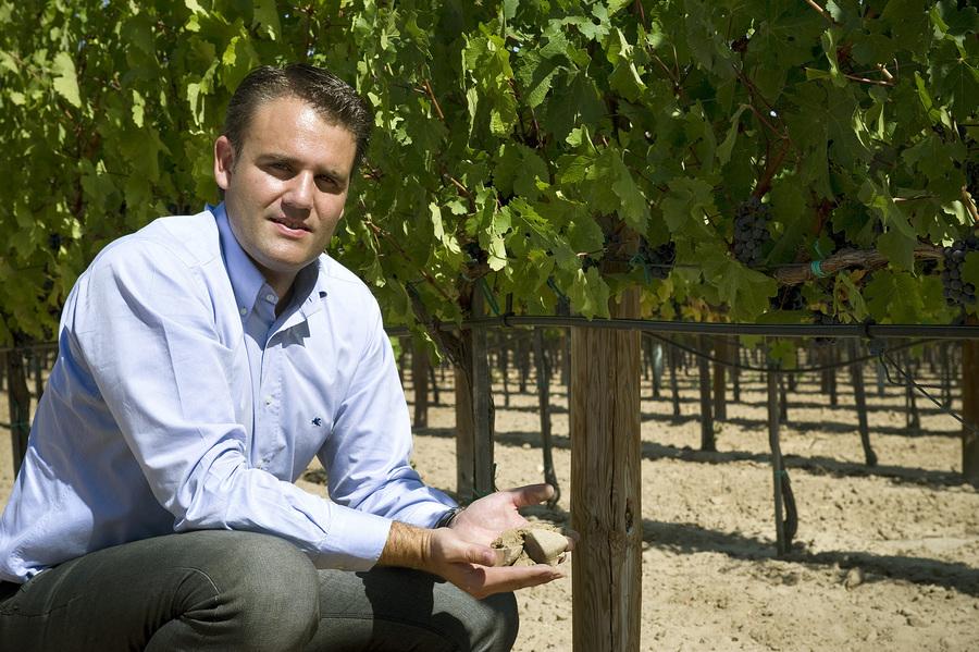 Bodegas Izadi - Rioja