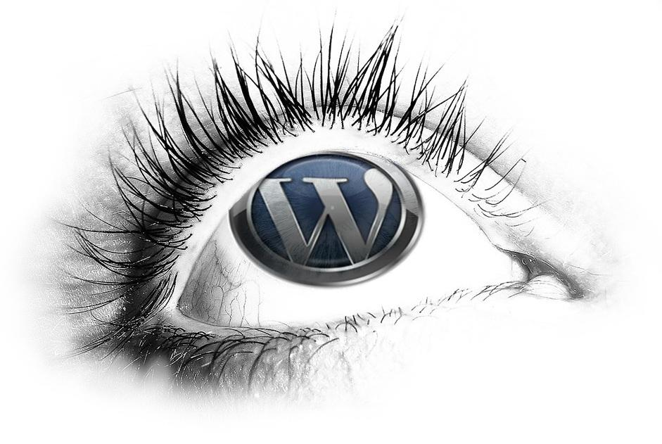 WordPress: Performance steigern ohne Plugins