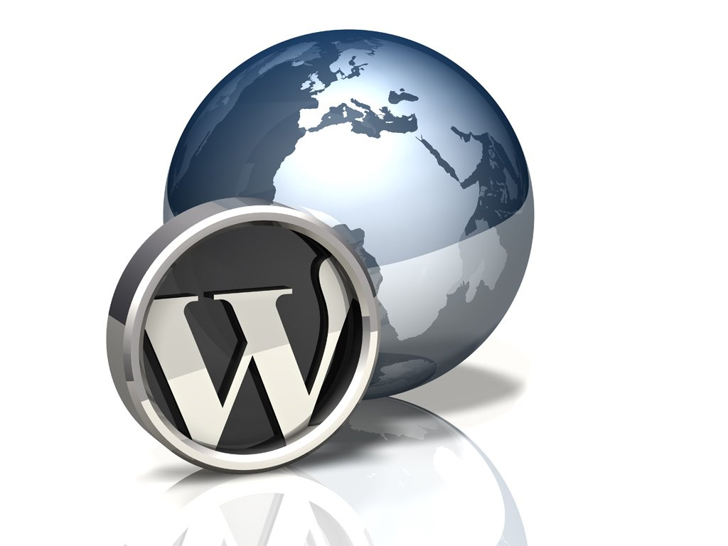 WordPress: Infographic