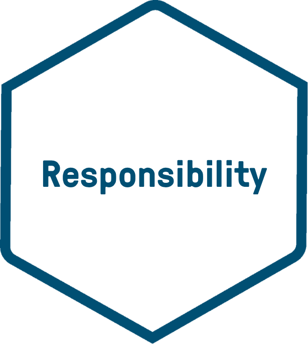 icon responsibility