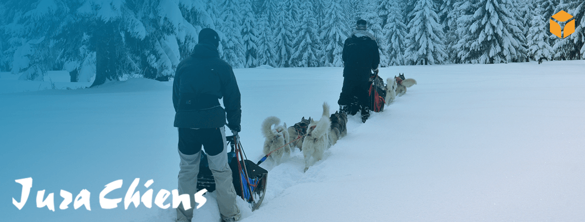Jurachiens, ou comment faire des activités hivernales un succès !