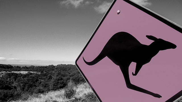 "Eté ni ""Bull"" , ni ""Bear"" mais ""Kangaroo"" sur les marchés"