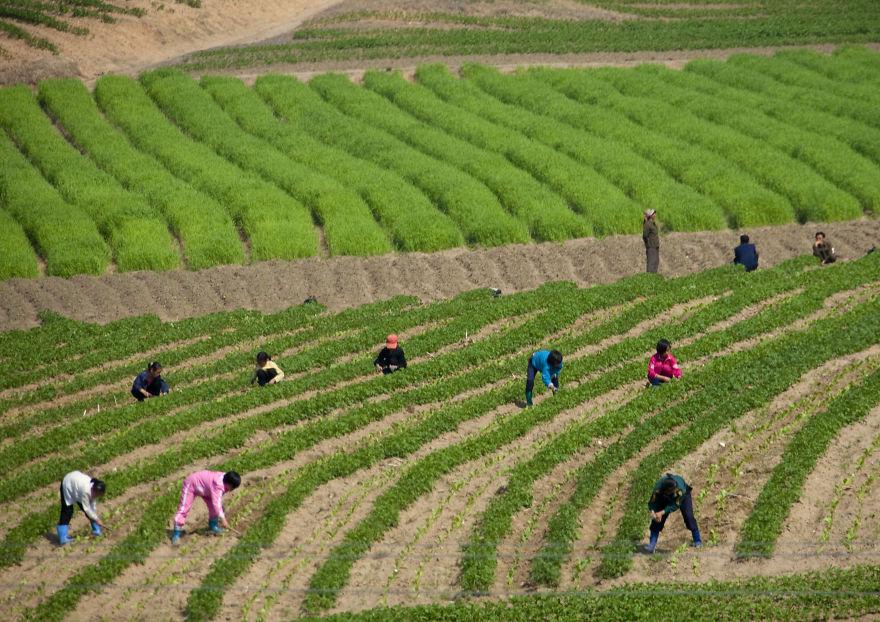 smuggled out photos north korea eric lafforgue 5a4f2b26b9017  880 - 51 תמונות שקים ג'ונג-און (מנהיג צפון קוריאה) לא היה רוצה שתראו והצלם סיכן את חיו בשביל זה