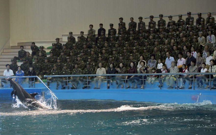 smuggled out photos north korea eric lafforgue 5a4f2e05928c3  880 - 51 תמונות שקים ג'ונג-און (מנהיג צפון קוריאה) לא היה רוצה שתראו והצלם סיכן את חיו בשביל זה