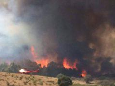 ferragosto-forestale-incendi-in-lieve-calo-ma-la-sardegna-tra-le-regioni-pi-and-ugrave-colpite