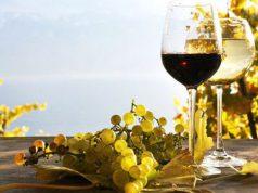 vino-sardo-omaggio-terra-culla-enologia-spopola-in-germania