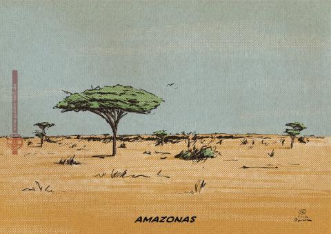 A savannah with the title inscription Amazonas