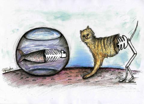 Global warming and habitat