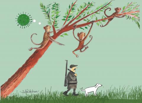 Hunter and monkey