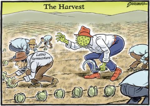 Farmworkers Harvest