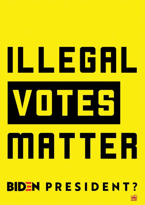 illegal votes matter by Nemo