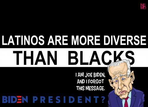 hispanics more diverse by Nemo