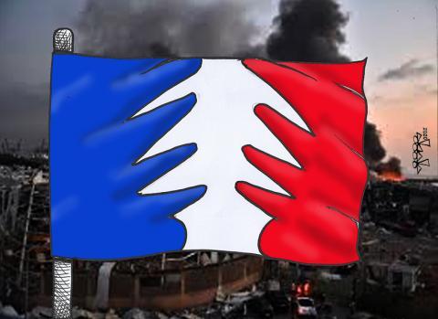 Lebanon cedar..m