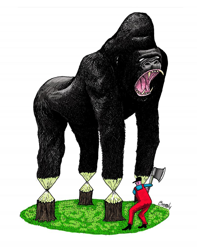 Cartoon about deforestation and gorillas