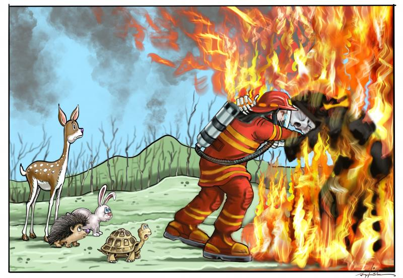 Cartoon about wildfires
