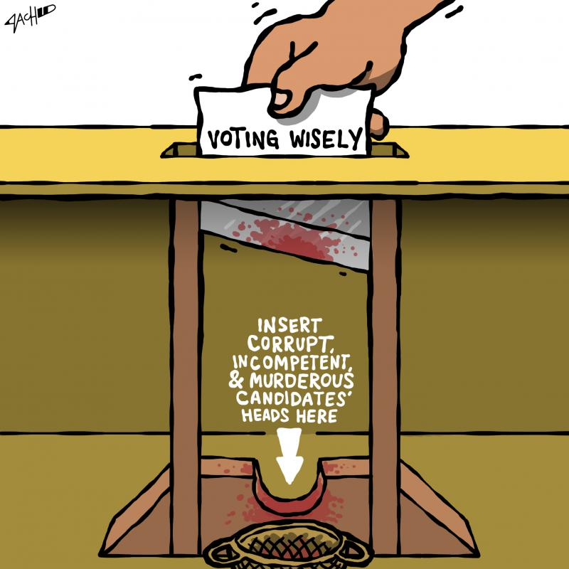 Cartoon about voting and elections