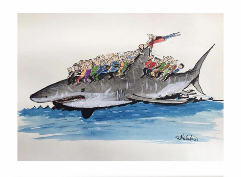 Migration and shark