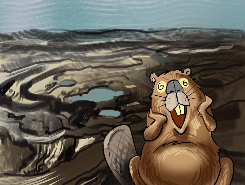 Cartoon about wildlife