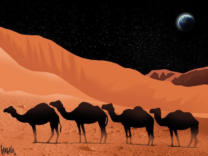 IN THE DESERT OF MARS